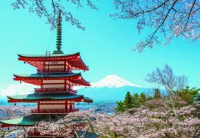 Le fameux mont Fuji en arrière-plan.