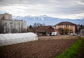 La ferme Aebi, entourée de ses champs, de ses serres, est appréciée par les habitants pour son marché permanent. MISSON