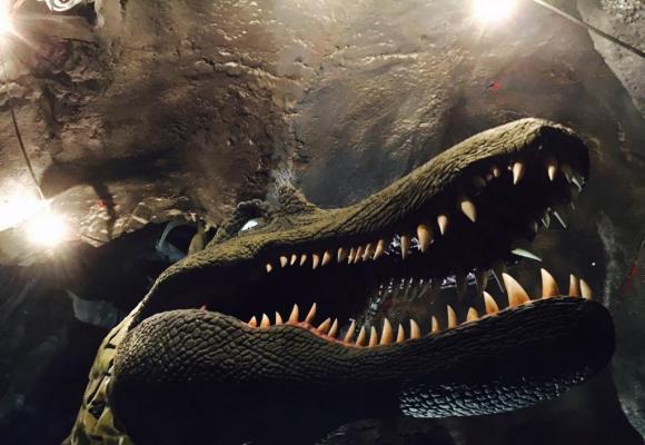 Le spinosaure sera l'une des stars incontestées des lieux. kottelat Parmi les espèces actuellement en quarantaine, les piranhas. kottelat