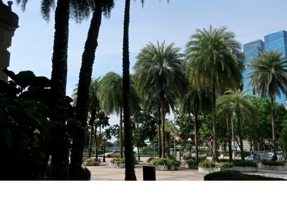 Chaque carrefour se donne des allures de jardin public.