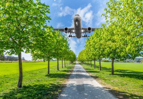 De nombreux voyageurs choisissent de compenser eux-mêmes leurs émissions de CO2. 123RF