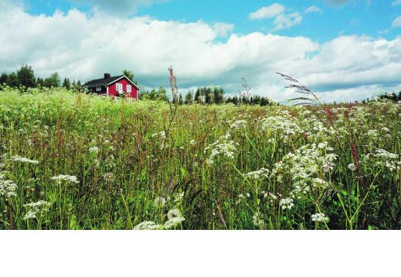 Le charme des maisons rouges, symbole national. BP