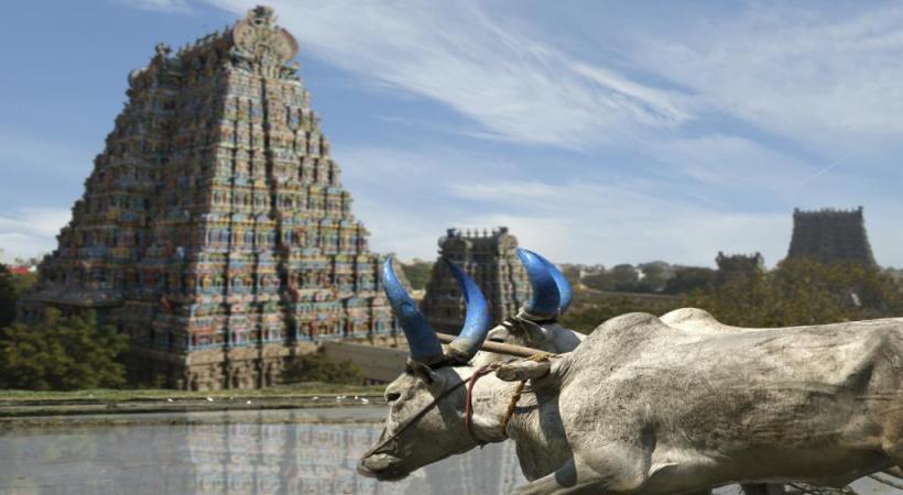 Au Tamil Nadu, la ville de Kanchipuram compte 125 temples.